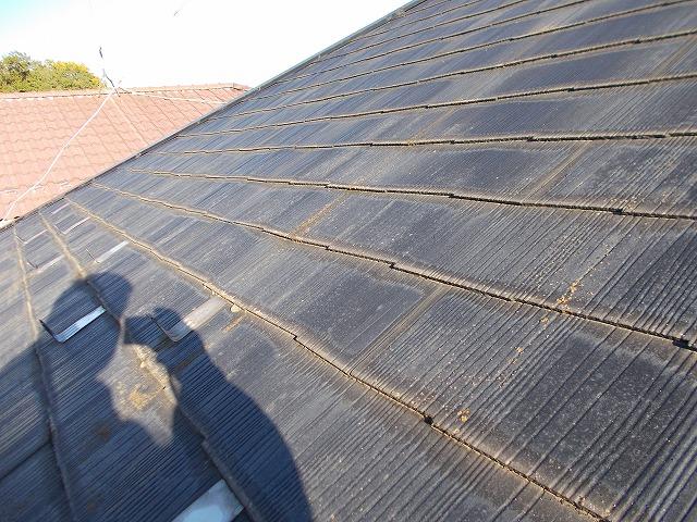 退色を起こしている屋根